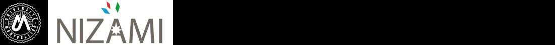 NIZAMI Logo